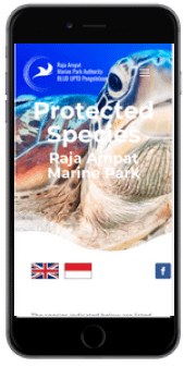 raja ampat marine park website smartphone view