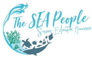 The SEA People France